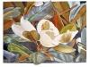 2021 Magnolia Grandiflora Galissonnière. Acuarela y tinta china. 50 x 40 cm.