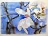 magnolia2015Acuarela