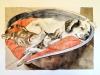 Napo e Romeo.2019. Acquerello eInchiostro seppia.70 x 50 cm.