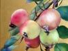 Pommes sauvages 2015 Huile sur toile