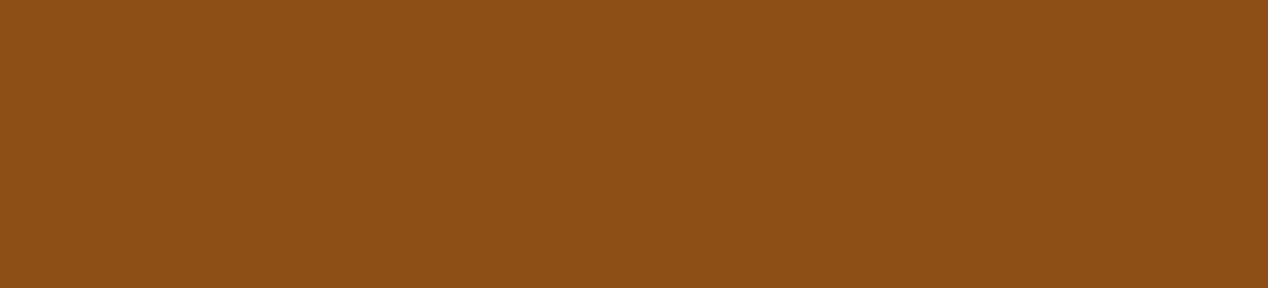Firma Paula Leiva